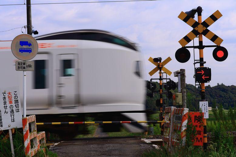 20111008naritaekusupuresu01.jpg