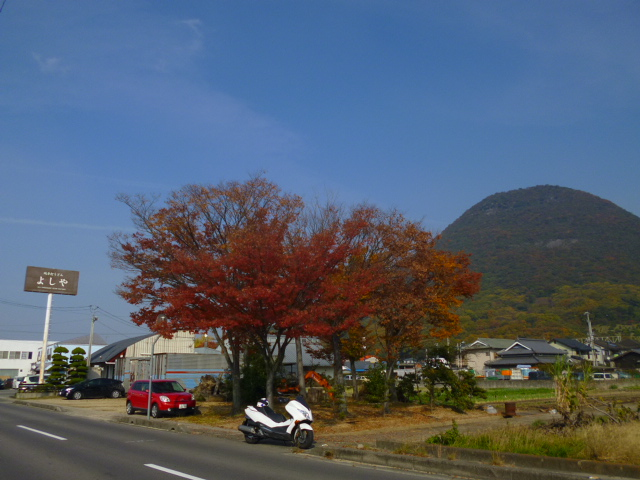 木々も色づいてきました 誰や! あんなとこバイク停めてんのは!!