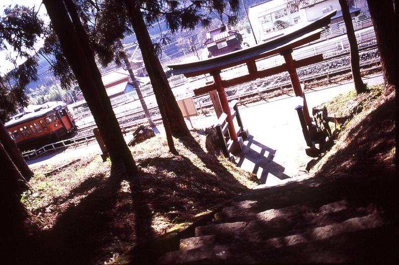 torii115.jpg