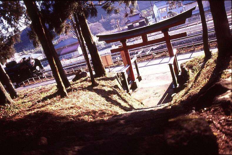 torii51.jpg