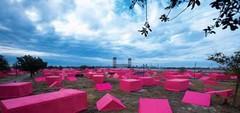 pink_projet.jpeg