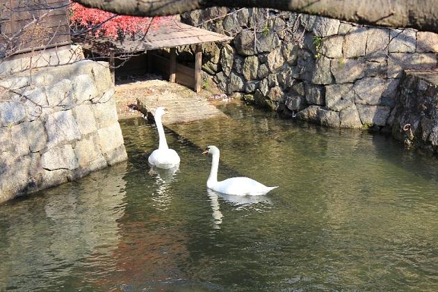 20111214倉敷002