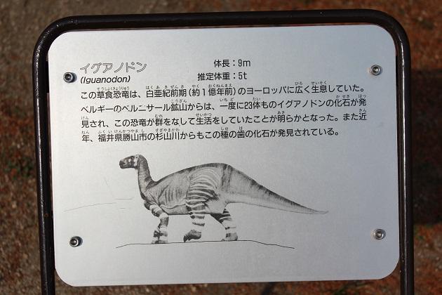 20120109 カブトガニ博物館_004