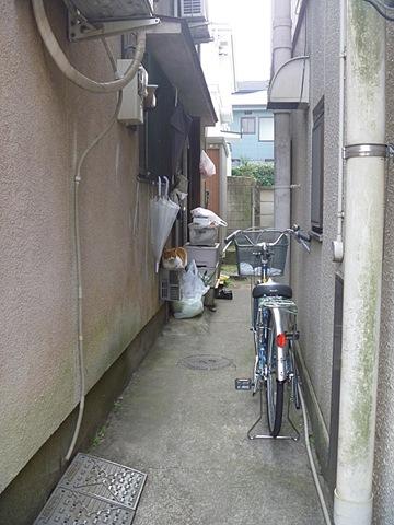 画像/冬の猫1