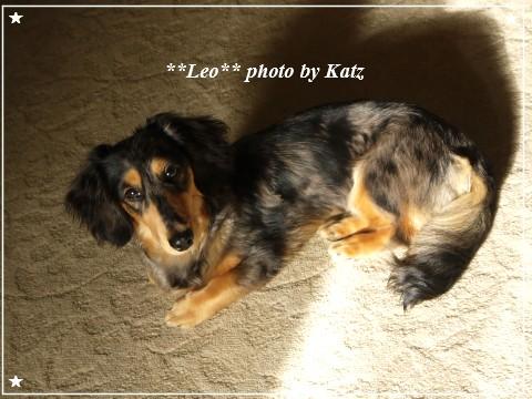 20110920 Leo