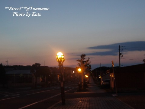 20110926 Leo夕散歩(1)