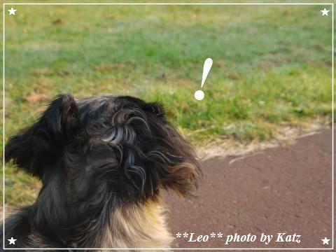 20110928 Leo (10)
