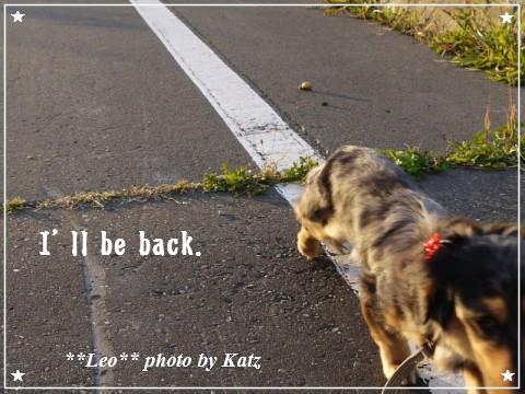 20111011 Leo (3)