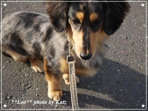 20111022 Leo (5)