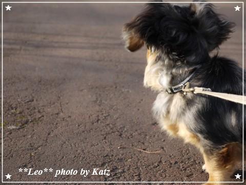 20111022 Leo (7)