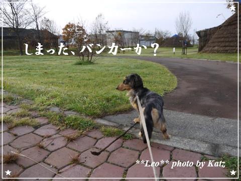 20111024 Leo (3)