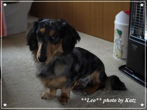20111025 Leo (2)