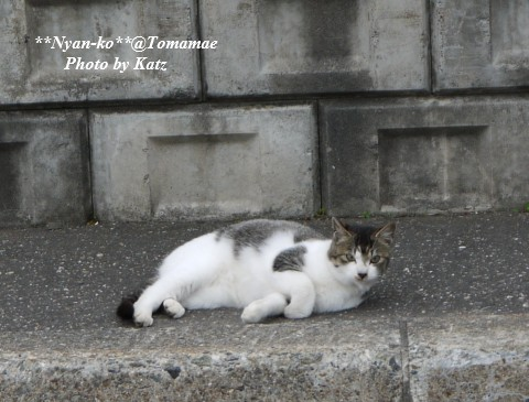 20111022 Leo (4)