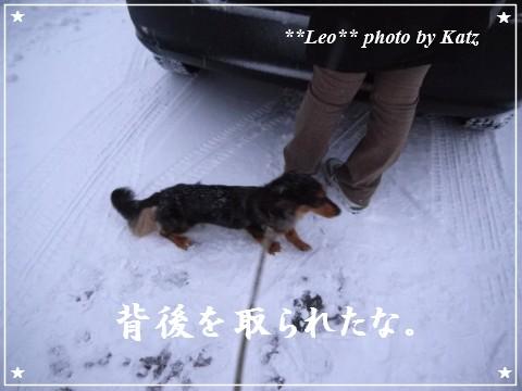 20111230 Leo (3)