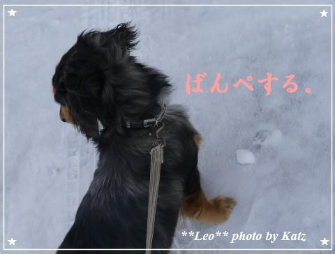 20120107 Leo (18)