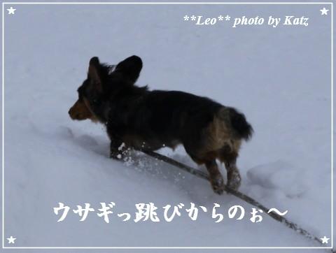 20120109 Leo (2)