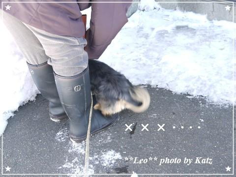 20120219 Leo (2)