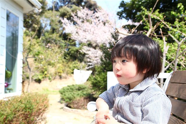 home_niwa