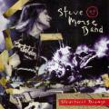 Steve Morse-Structural Damage