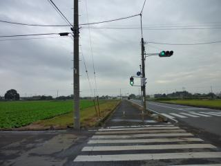 P1000096.jpg