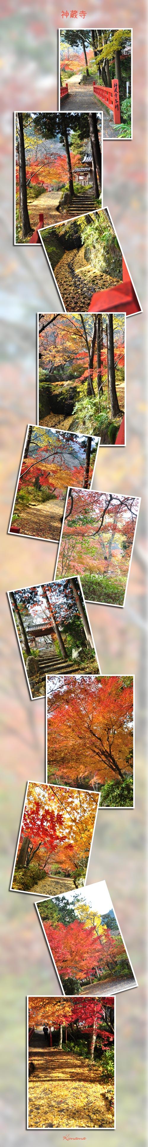 12月4日神蔵寺