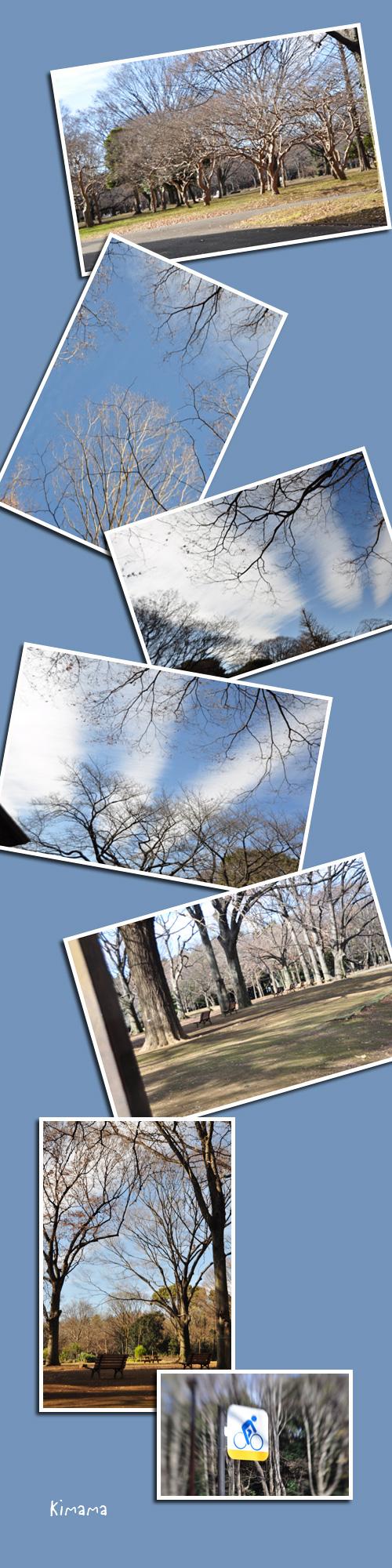 1月3日代々木公園