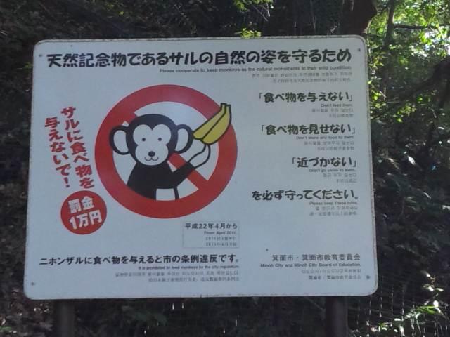 サルの看板