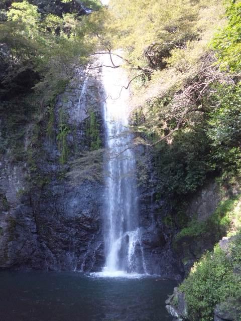 箕面滝 アップ2
