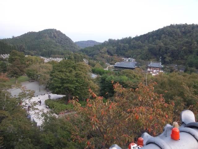 本堂付近からの景色
