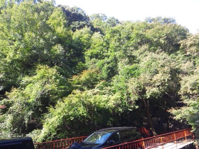 滝の茶屋付近の風景1