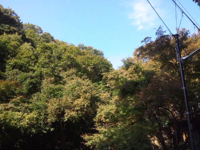 滝の茶屋付近の風景2