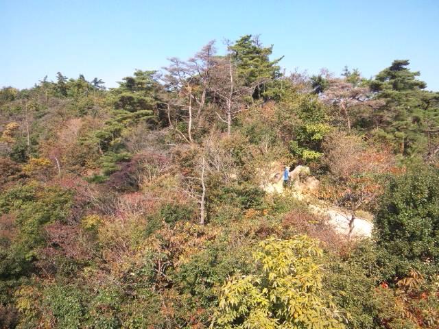 風吹岩からの風景(北)