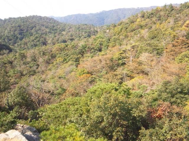 風吹岩からの風景(西)