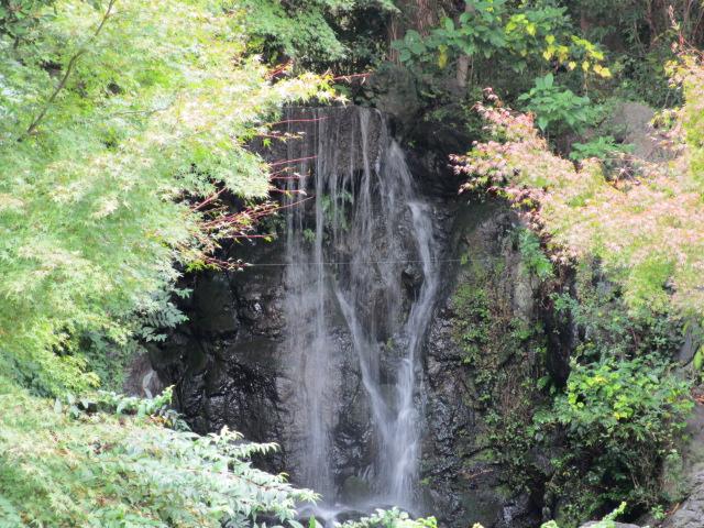もみじの滝5