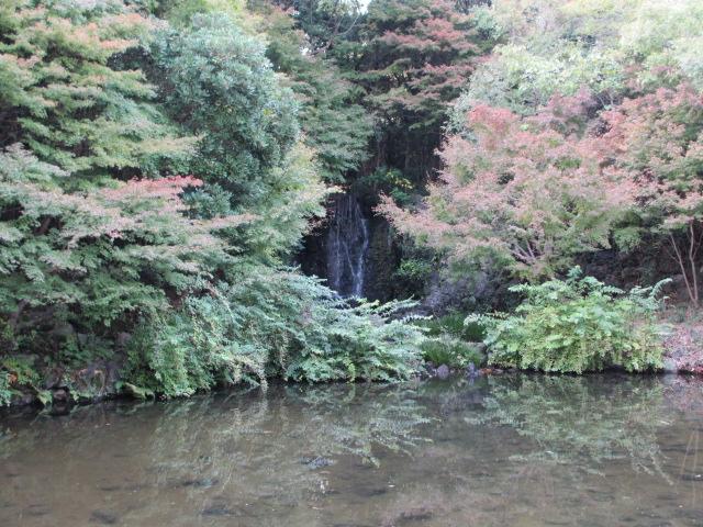 もみじの滝6