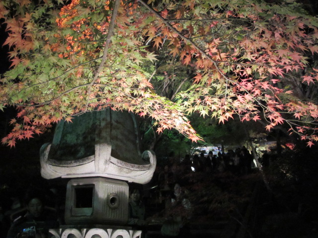 阿弥陀堂の下2
