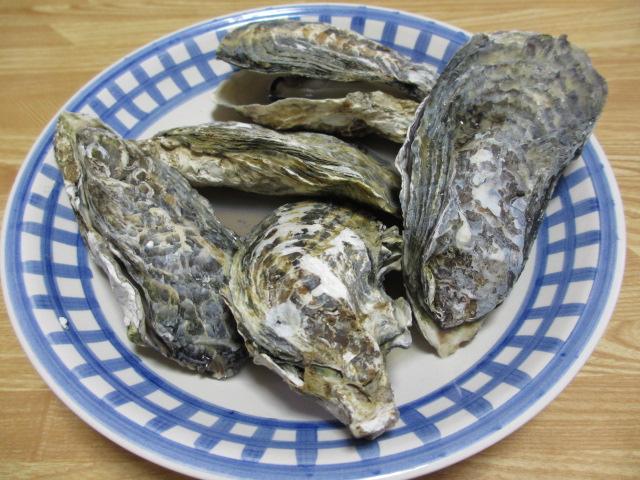 牡蠣パーティー2