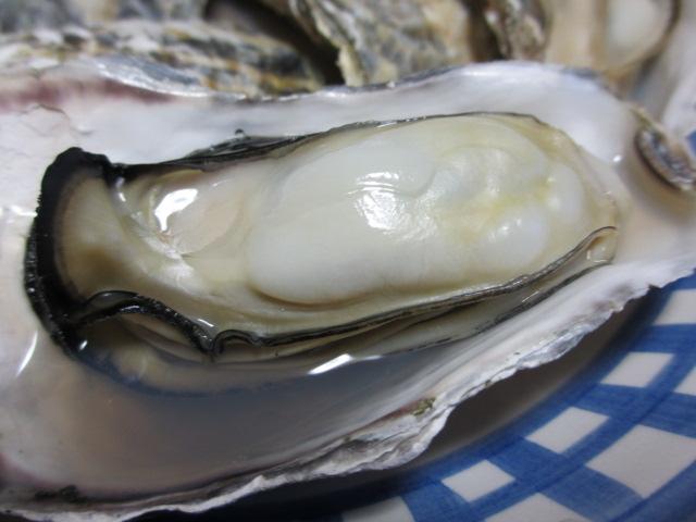 牡蠣パーティー3