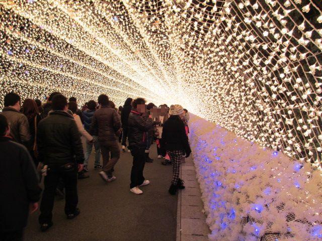 光のトンネル「華回廊」2