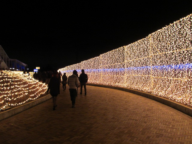 光のトンネル「華回廊」4