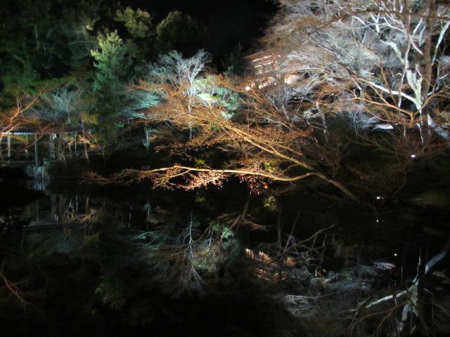 高台寺 臥龍池(夜)