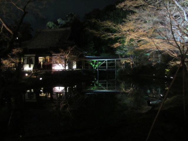 高台寺 臥龍池(夜)2