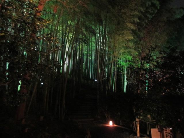 高台寺 竹林(夜)