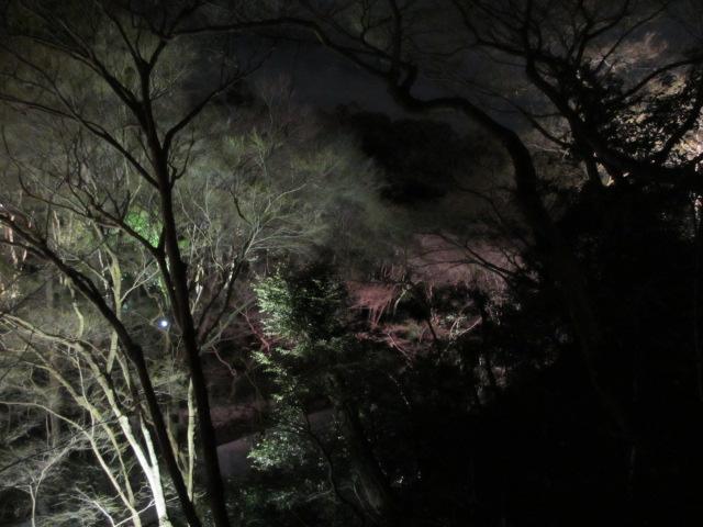 清水寺 音羽の滝から進む