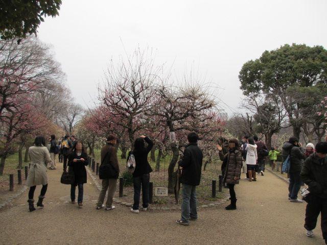 大阪城公園 梅林入口入る