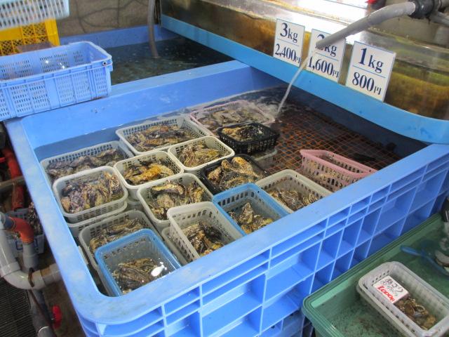 吉田水産 牡蠣