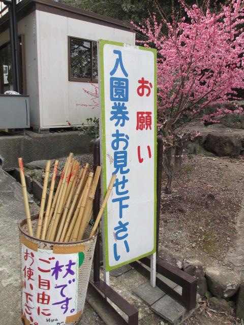 綾部山梅林 入口前の杖