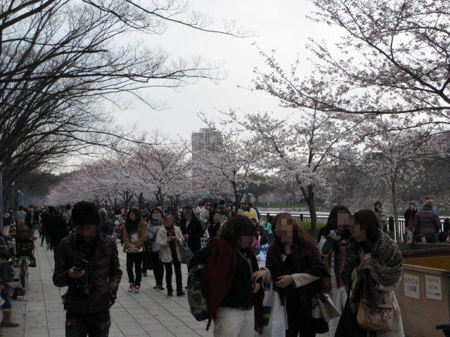 大阪城公園 外濠沿い