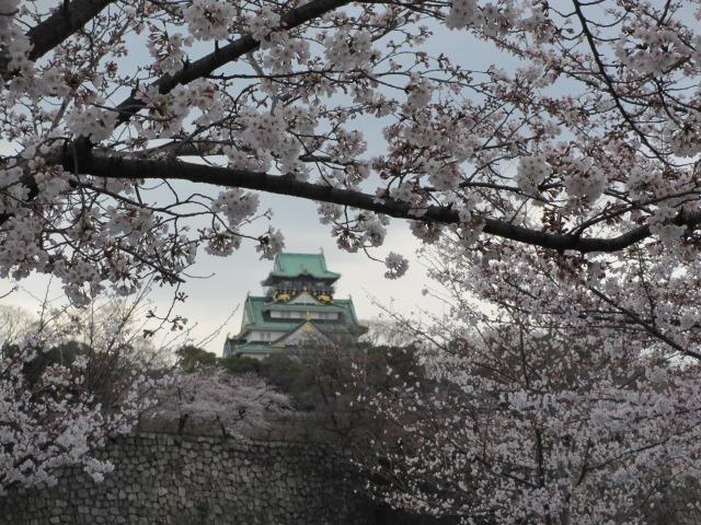 大阪城公園 外濠沿い4