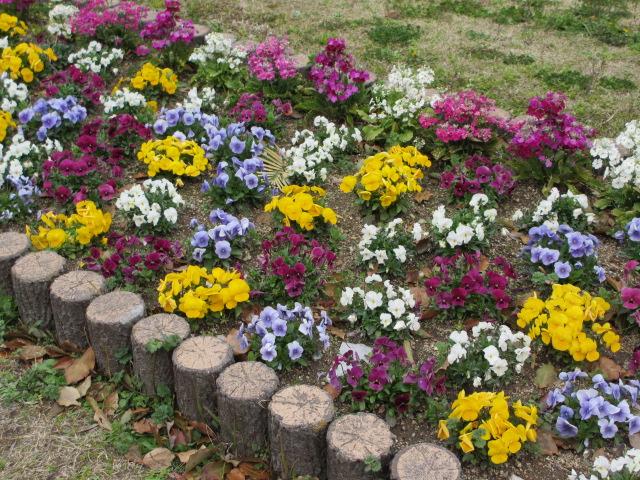 旧大阪市立博物館前の花壇
